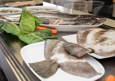 Restaurante Augusta em Braga - Peixe do dia